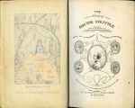 The story of Doctor Dolittle : being the history of his peculiar life at home and astonishing adventures in foreign...